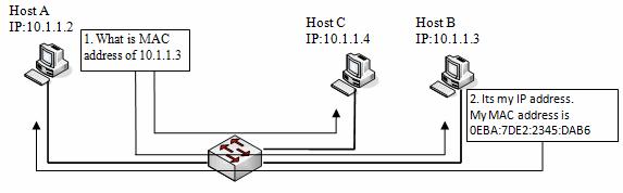 Apa Fungsi dan Peran Protocol ARP Dalam Jaringan Komputer (Networking) Berikut Penjelasannya