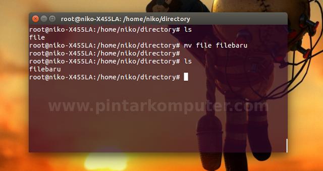 Command Linux yang Biasa Digunakan Untuk me-Manage Files Melalui Terminal