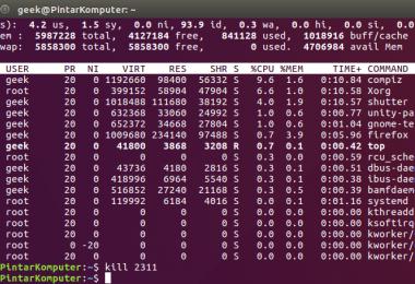 Perintah Kill di Terminal Linux