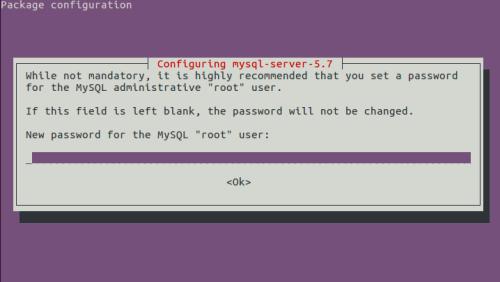 Password MySQL